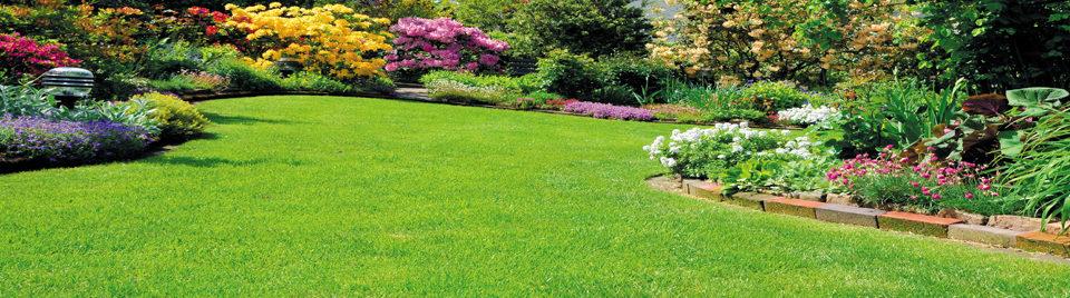 Realizujeme záhrady a automatické závlahy