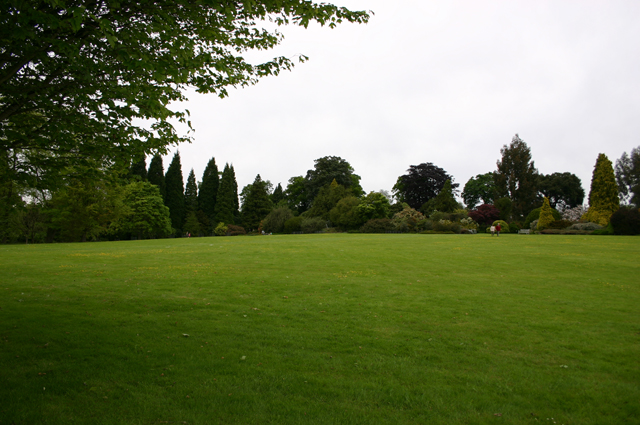Lawn_22