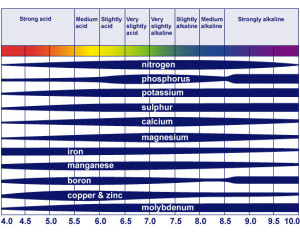 soil_ph_table