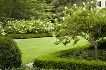 Výsadba drevín a okrasných záhonov