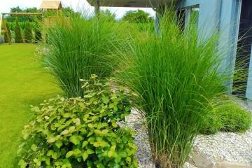 Hobby záhrady-trávniky